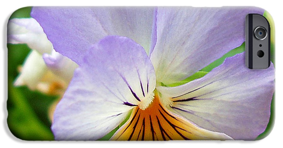Pansy IPhone 6s Case featuring the photograph Lavender Pansy by Nancy Mueller