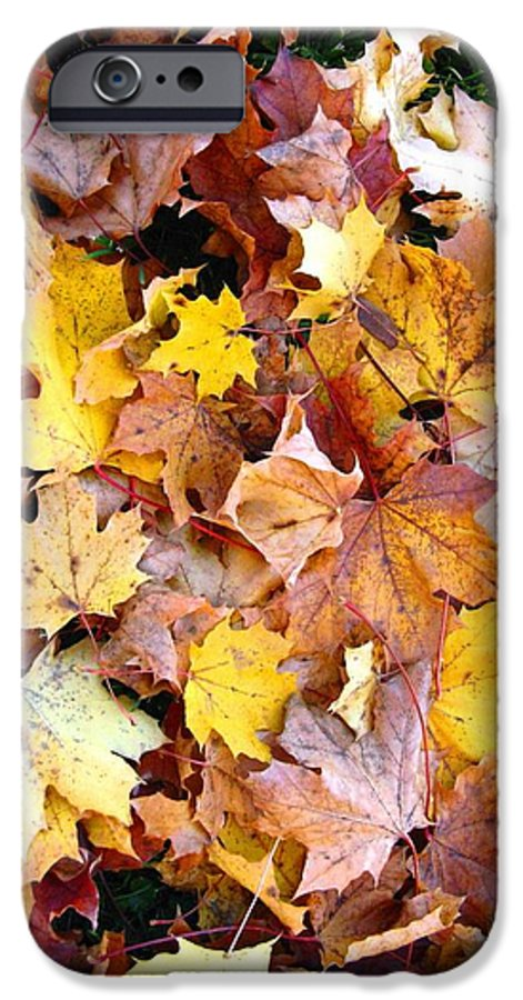 Leaves IPhone 6s Case featuring the photograph Leaves Of Fall by Rhonda Barrett
