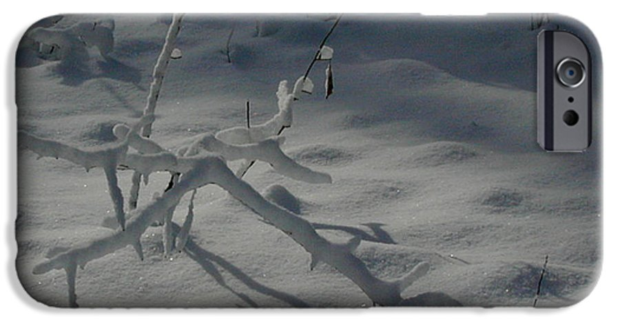 Loneliness IPhone 6s Case featuring the photograph Loneliness In The Cold by Douglas Barnett