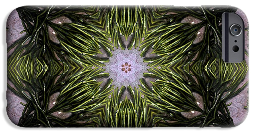 Mandala IPhone 6s Case featuring the digital art Mandala Sea Sponge by Nancy Griswold