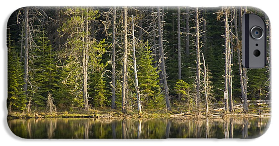 Trees IPhone 6s Case featuring the photograph Moose Creek Reservoir by Idaho Scenic Images Linda Lantzy