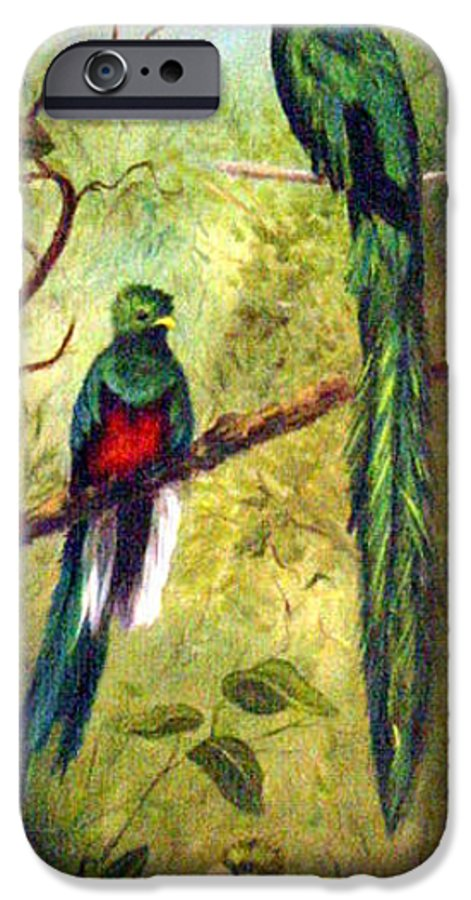 Landscape IPhone 6s Case featuring the painting Quetzels by Anne Kushnick