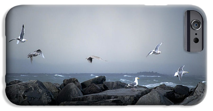 Landscape IPhone 6s Case featuring the photograph Seagulls In Flight by Larry Keahey
