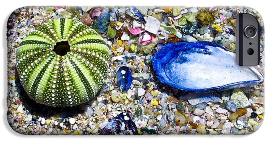 Seashore IPhone 6s Case featuring the photograph Seashore Colors by Douglas Barnett