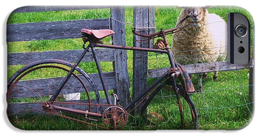 Photograph Sheep Bicycle Fence Grass IPhone 6s Case featuring the photograph Sheep And Bicycle by Seon-Jeong Kim