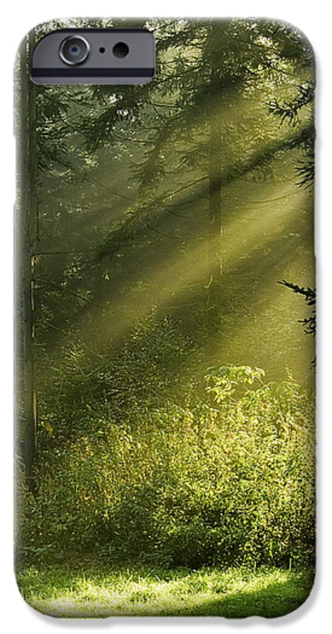 Nature IPhone 6s Case featuring the photograph Sunlight by Daniel Csoka