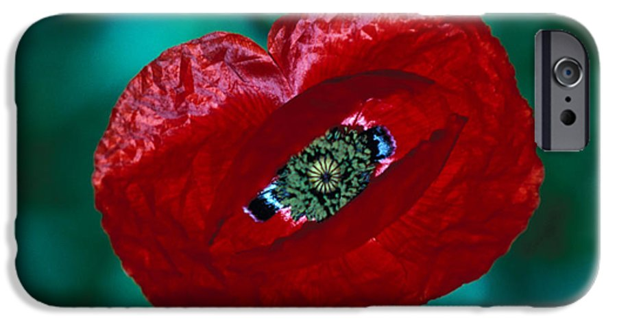 Bright; Red; Green; Brilliant; Flower; Flora; Close-up; Eye; Nature; Opium; Sleep; Death; Hypnotic; Magic; Wizard; Dorothy; France IPhone 6s Case featuring the photograph The Opiate Of Desire by Carl Purcell