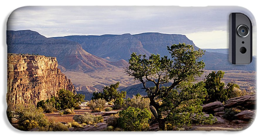 Arizona IPhone 6s Case featuring the photograph Toroweap by Kathy McClure