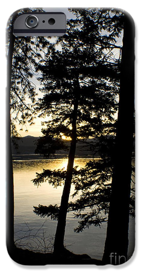 Trees IPhone 6s Case featuring the photograph Trees By The Lake by Idaho Scenic Images Linda Lantzy