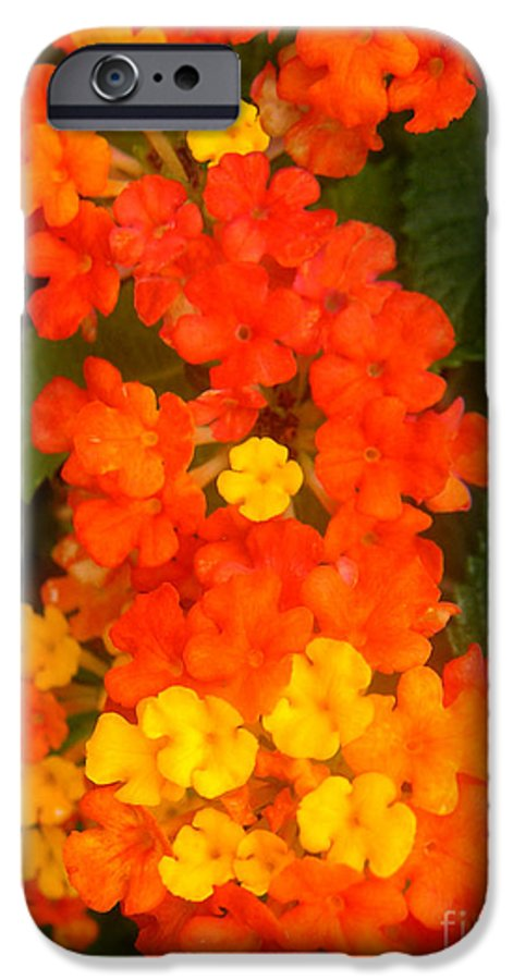 Nature IPhone 6s Case featuring the photograph Volcanic Display by Lucyna A M Green