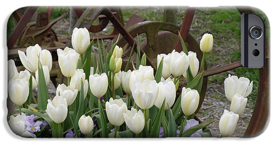 White IPhone 6s Case featuring the photograph Wagon Wheel Tulips by Louise Magno
