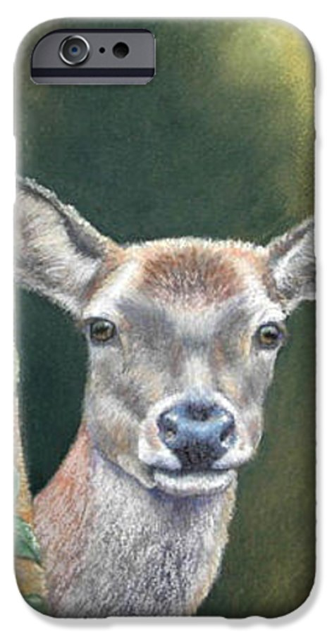 Rainforest IPhone 6s Case featuring the painting White Tail Doe At Ancon Hill by Ceci Watson