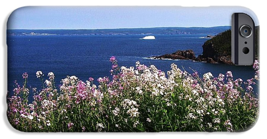 Photograph Iceberg Wild Flower Atlantic Ocean Newfoundland IPhone 6s Case featuring the photograph Wild Flowers And Iceberg by Seon-Jeong Kim