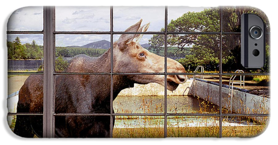 Moose IPhone 6s Case featuring the photograph Window - Moosehead Lake by Peter J Sucy