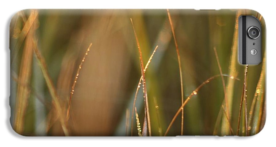 Dew IPhone 6s Plus Case featuring the photograph Dewy Grasses by Nadine Rippelmeyer