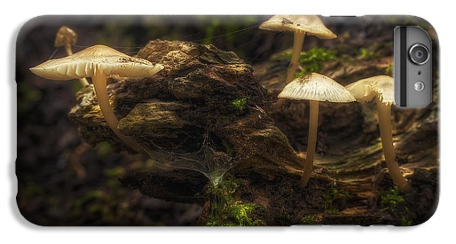 Mushrooms IPhone 6s Plus Case featuring the photograph Enchanted Forest by Scott Norris