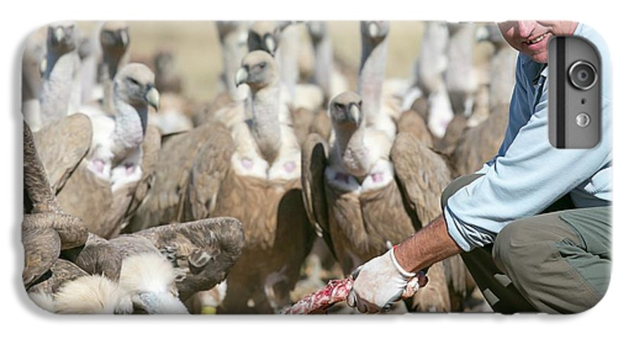 Griffon Vulture IPhone 6s Plus Case featuring the photograph Griffon Vulture Conservation by Nicolas Reusens