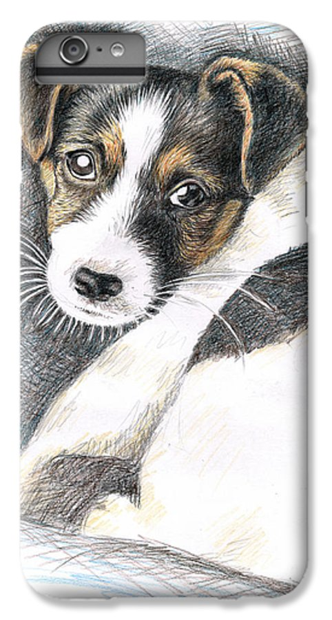 Dog IPhone 6s Plus Case featuring the drawing Jack Russell Puppy by Nicole Zeug