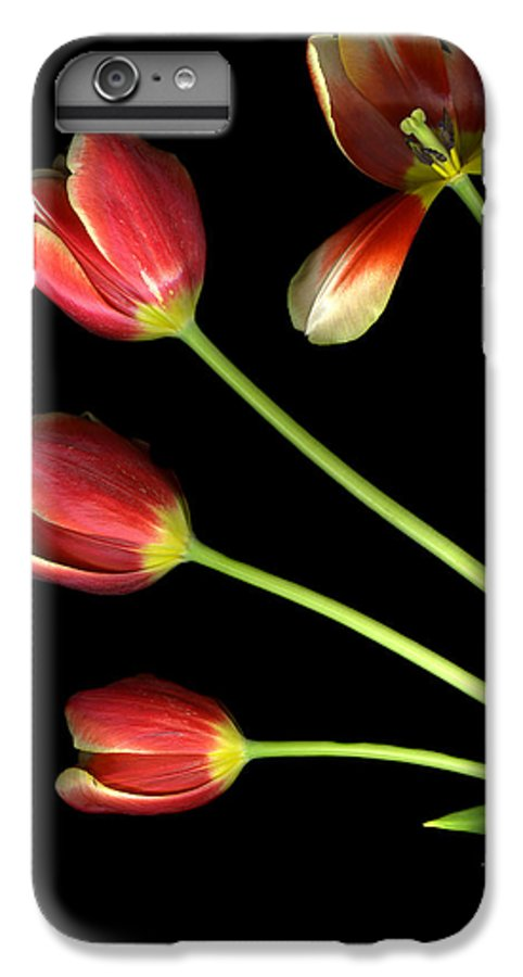 Scanography IPhone 6s Plus Case featuring the photograph Pot Of Tulips by Christian Slanec