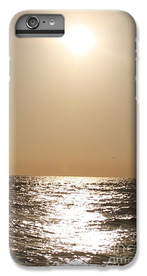 Silver IPhone 6s Plus Case featuring the photograph Silver And Gold by Nadine Rippelmeyer