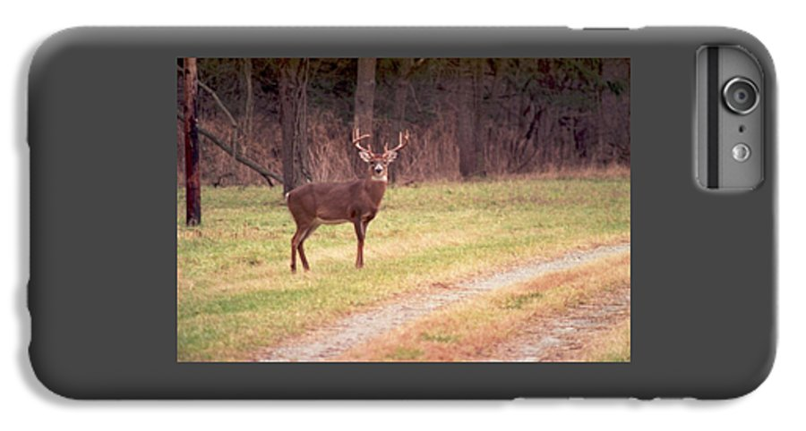 Deer IPhone 6s Plus Case featuring the photograph 070506-17 by Mike Davis