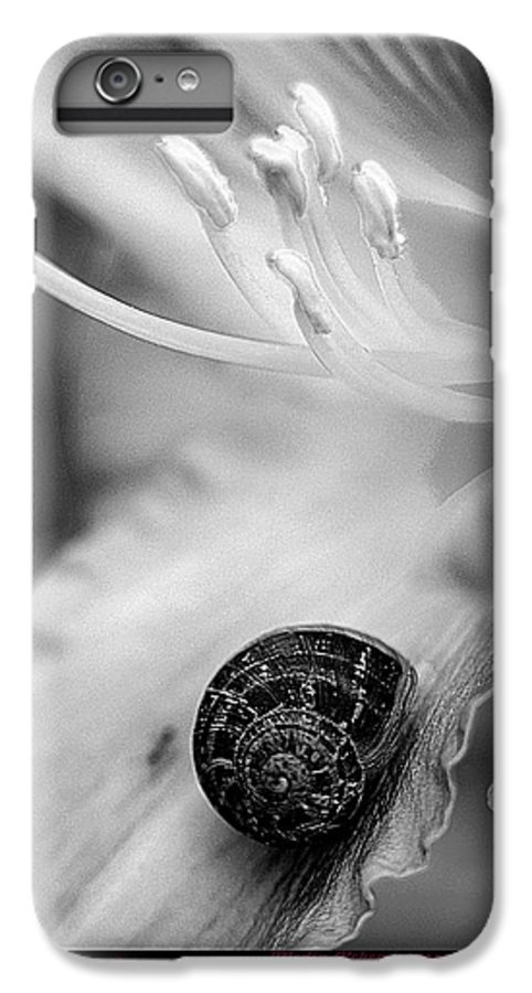 Clay IPhone 6s Plus Case featuring the photograph B And White Floral With Snail by Clayton Bruster