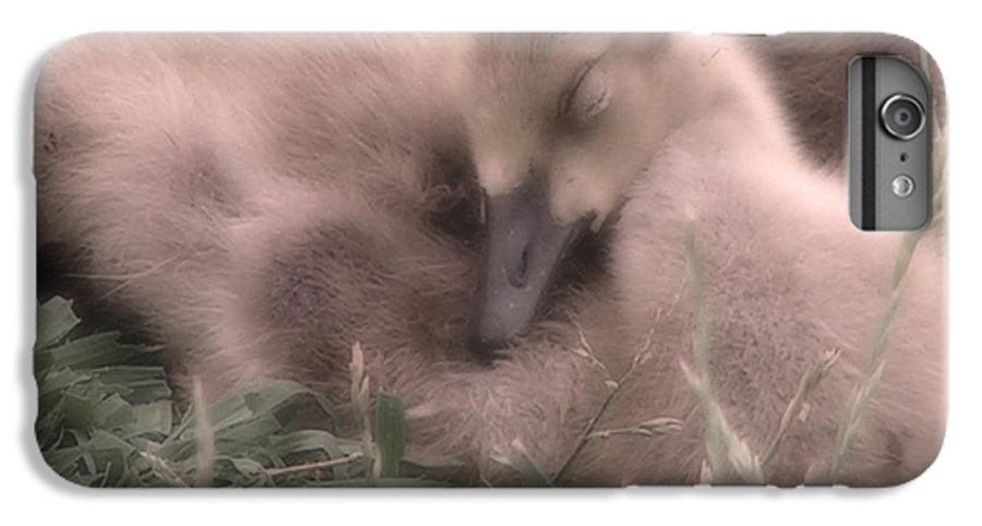 Goose IPhone 6s Plus Case featuring the photograph All Is Right In My World by Kenneth Krolikowski