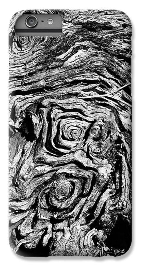 Tree IPhone 6s Plus Case featuring the photograph Ancient Stump by Christopher Holmes