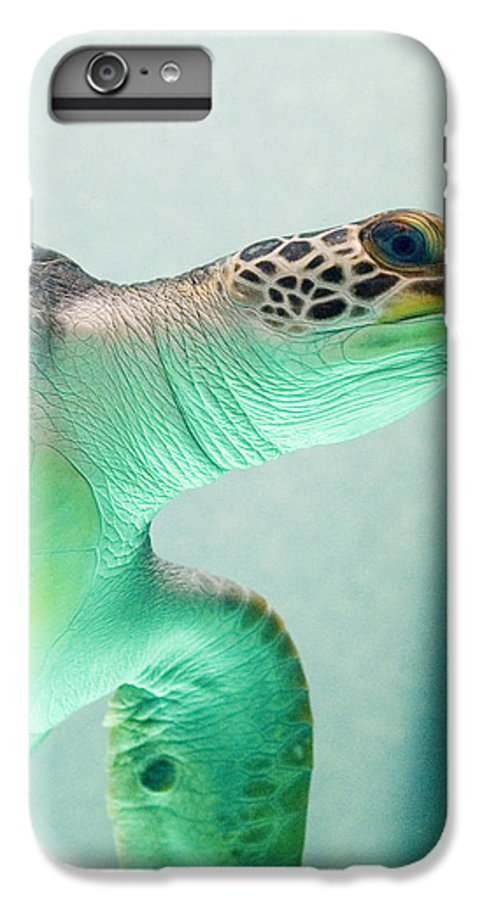 Skip Hunt IPhone 6s Plus Case featuring the photograph Angel 2 by Skip Hunt