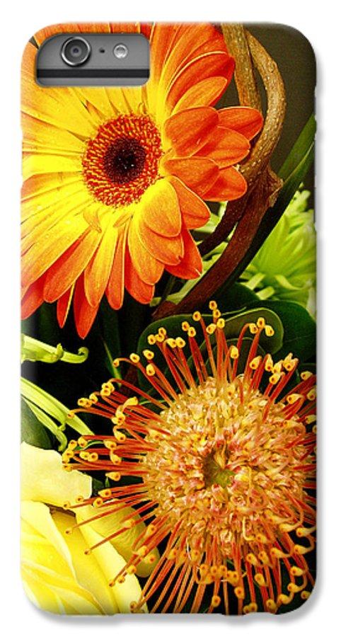 Autumn IPhone 6s Plus Case featuring the photograph Autumn Flower Arrangement by Nancy Mueller
