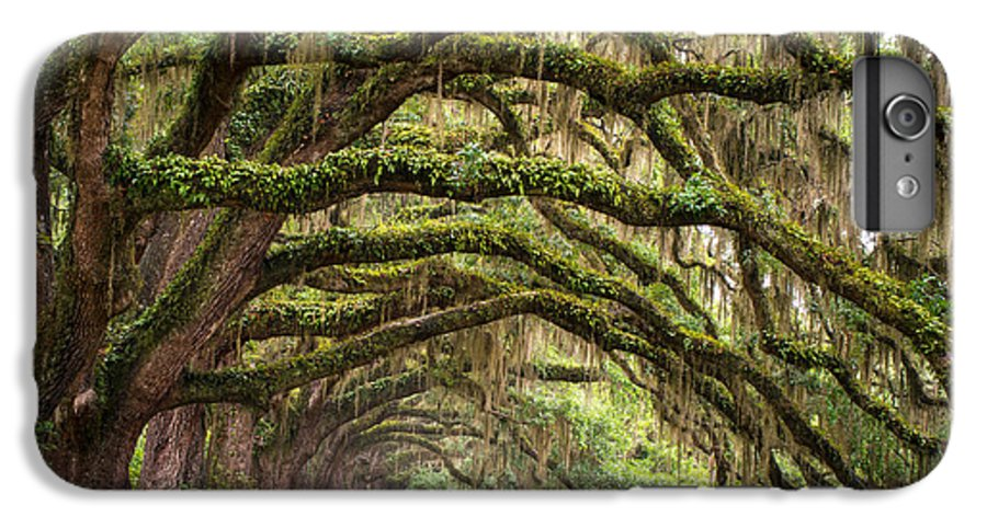 Charleston Sc IPhone 6s Plus Case featuring the photograph Avenue Of Oaks - Charleston Sc Plantation Live Oak Trees Forest Landscape by Dave Allen
