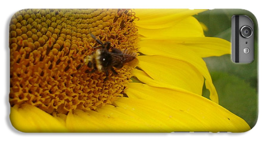 Bee IPhone 6s Plus Case featuring the photograph Bee On Sunflower 3 by Chandelle Hazen
