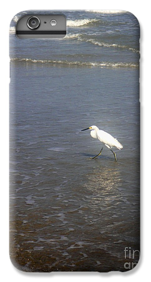Nature IPhone 6s Plus Case featuring the photograph Being One With The Gulf - Wary by Lucyna A M Green