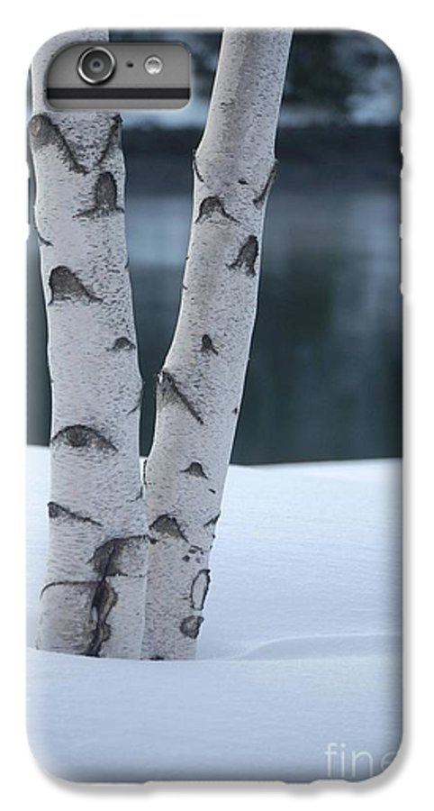 Birch IPhone 6s Plus Case featuring the photograph Birch Twins In Snow by Faith Harron Boudreau