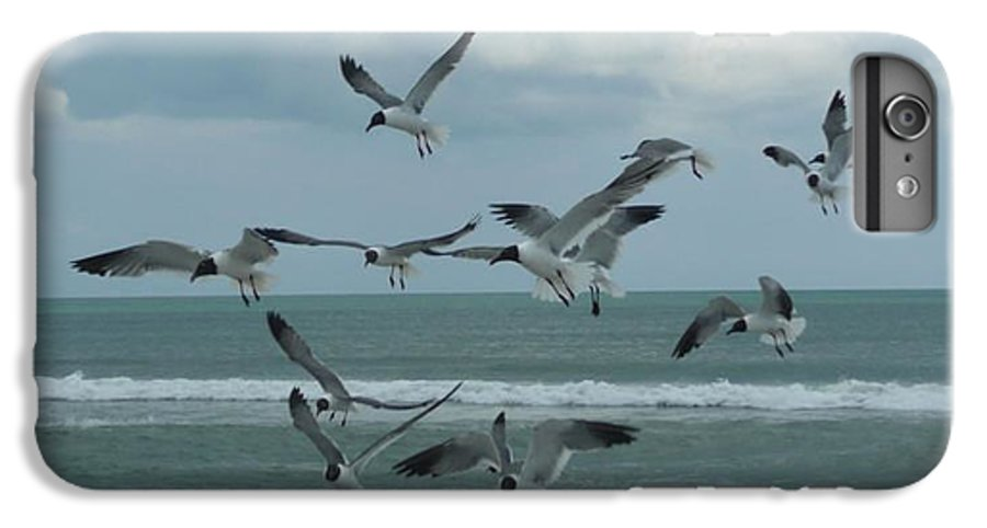 Birds IPhone 6s Plus Case featuring the photograph Birds In Flight by Barb Montanye Meseroll