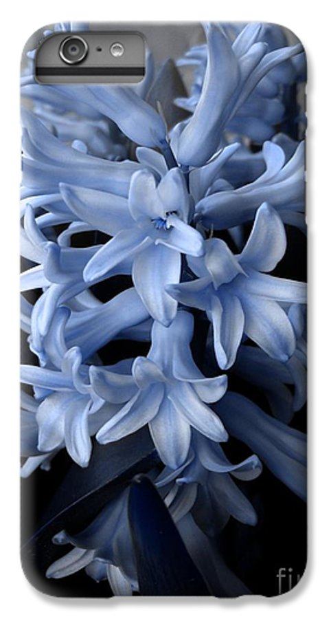 Blue IPhone 6s Plus Case featuring the photograph Blue Hyacinth by Shelley Jones