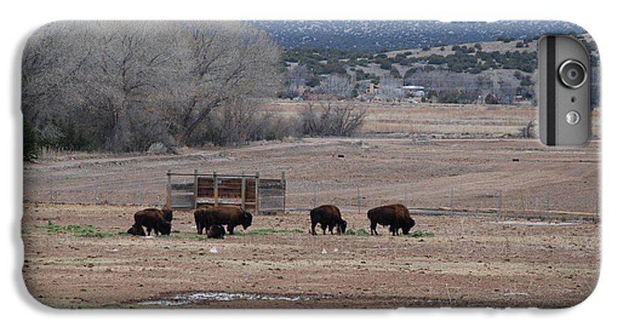 Buffalo IPhone 6s Plus Case featuring the photograph Buffalo New Mexico by Rob Hans