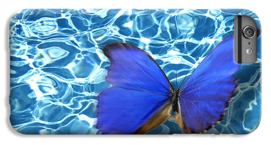 Animals IPhone 6s Plus Case featuring the photograph Butterfly by Tony Cordoza