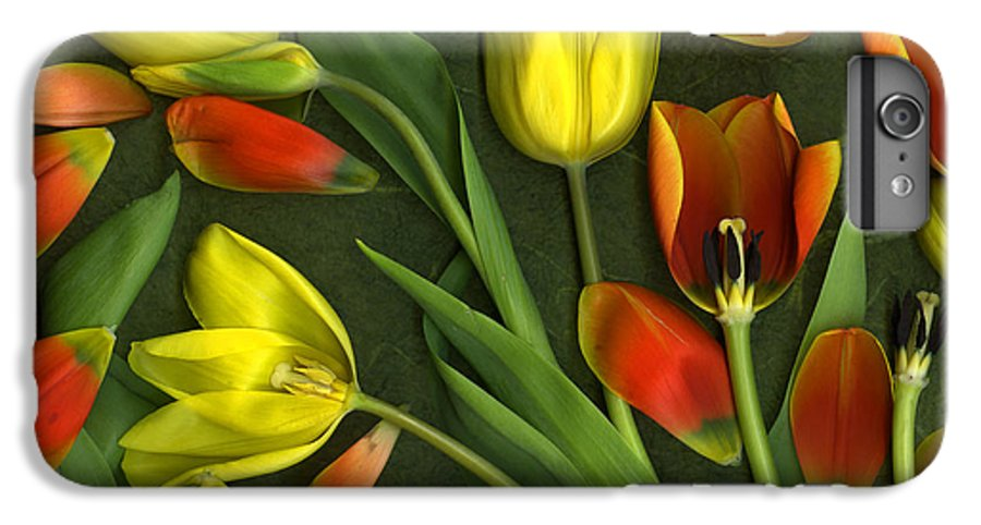 Red IPhone 6s Plus Case featuring the photograph Carnival by Christian Slanec