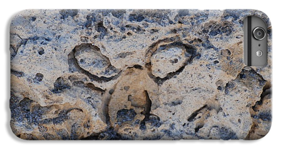 Ocean IPhone 6s Plus Case featuring the photograph Carved Catface by Rob Hans