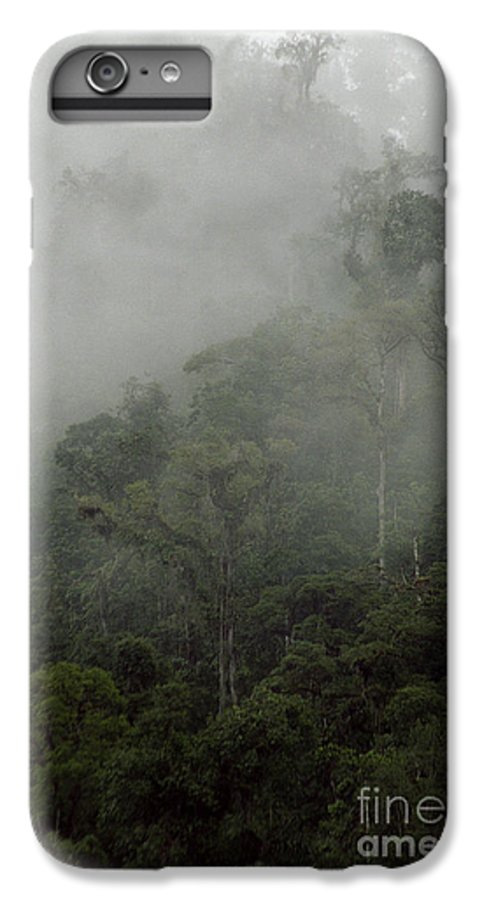 Rainforest IPhone 6s Plus Case featuring the photograph Cloud Forest by Kathy McClure