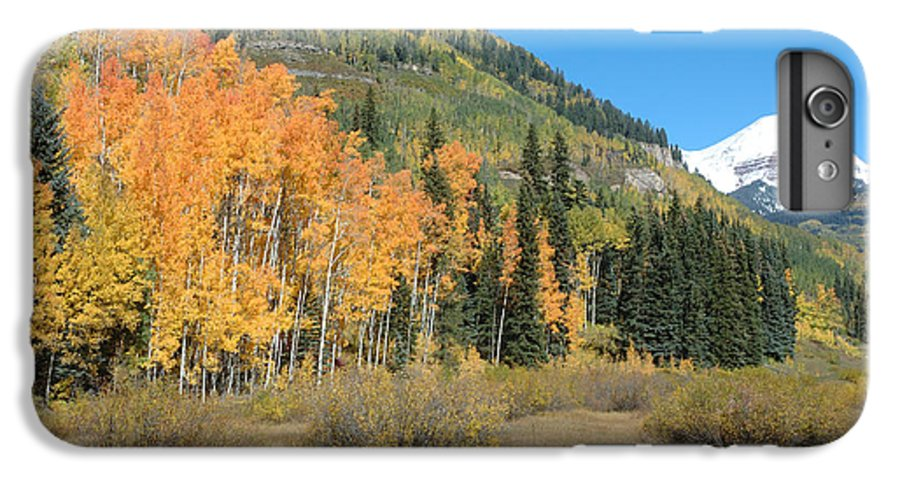 Aspen IPhone 6s Plus Case featuring the photograph Colorado Gold by Jerry McElroy