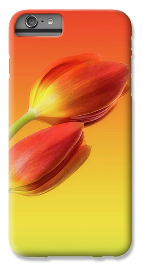 Tulips IPhone 6s Plus Case featuring the photograph Colorful Tulips by Wim Lanclus