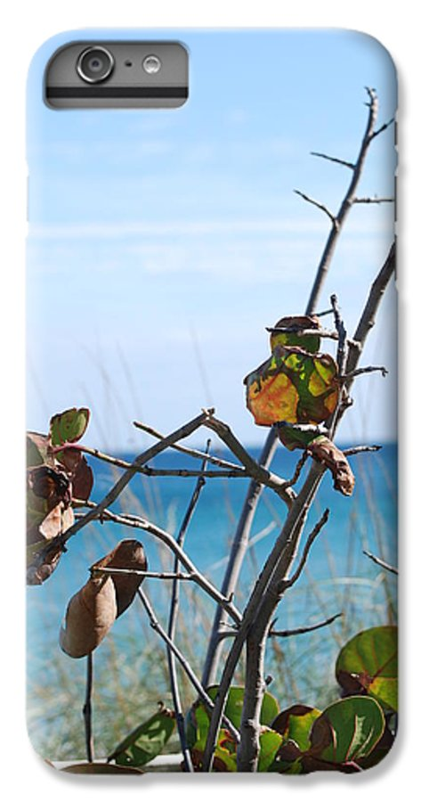 Ocean IPhone 6s Plus Case featuring the photograph Dune Plants by Rob Hans