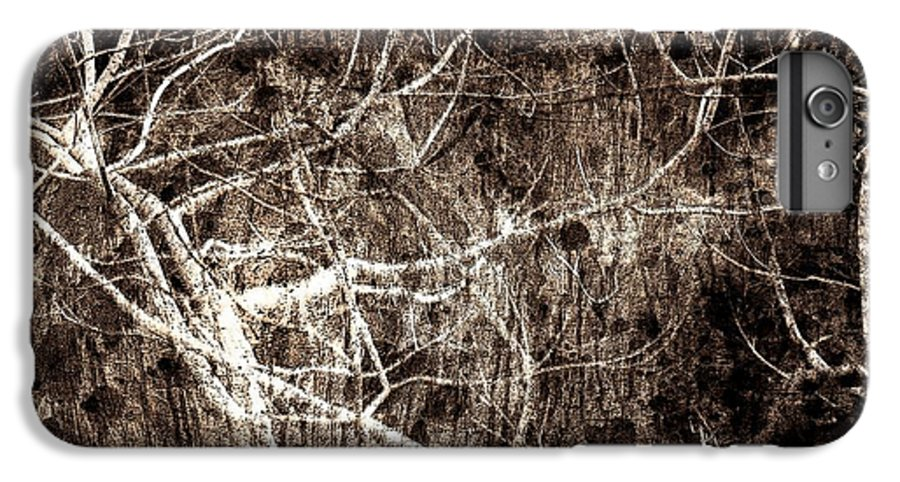 Tree IPhone 6s Plus Case featuring the photograph Endless by Gaby Swanson