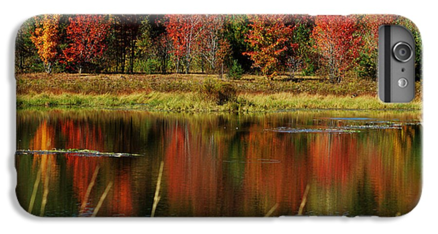 Autumn IPhone 6s Plus Case featuring the photograph Fall Splendor by Linda Murphy