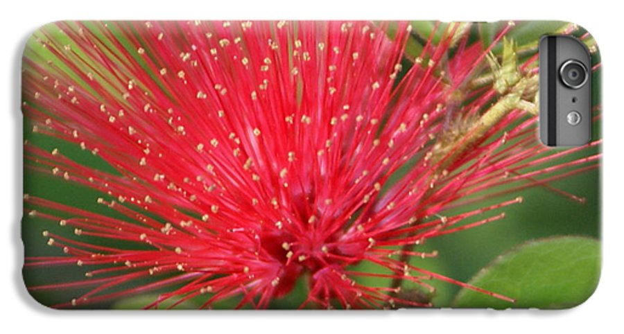 Surrealism IPhone 6s Plus Case featuring the painting Flower Optics 2 by Debbie May