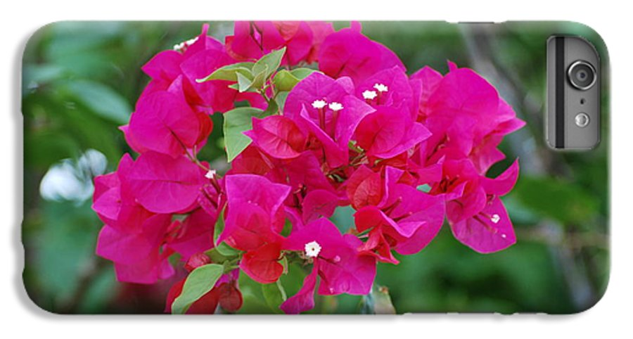 Flowers IPhone 6s Plus Case featuring the photograph Flowers by Rob Hans
