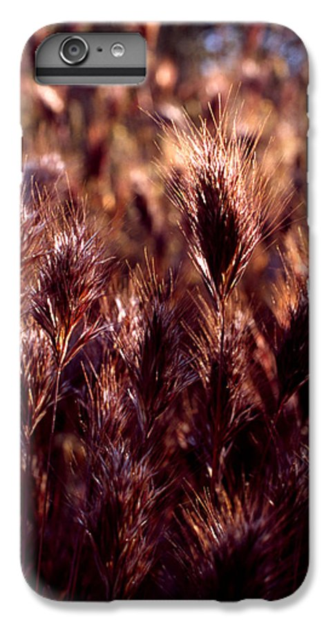 Nature IPhone 6s Plus Case featuring the photograph Gideon by Randy Oberg
