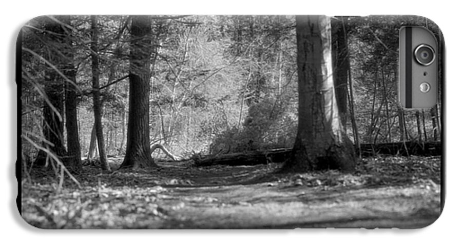 Trees IPhone 6s Plus Case featuring the photograph Ground Floor by Jean Macaluso